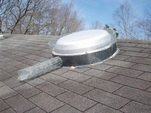 Animal Proofers Chimney Capping Specialist in North Atlanta