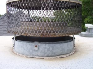 Animal Proofers Chimney Capping Experts (Before Pic)