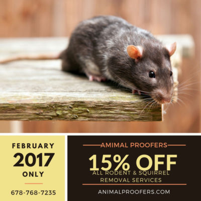 Animal Proofers February Special